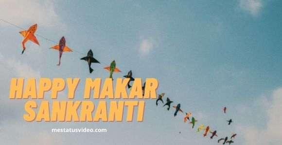 makar sankranti status video